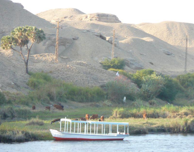 Kruizas Nilu